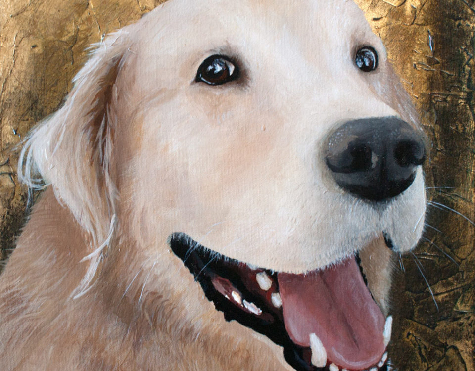 Amanda Kaay - original painting - acrylic and gold leaf - pet portraits -Kobe